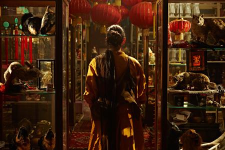 フィオナ・タン『ディスオリエント』 HDヴィデオ・インスタレーション 2009年 Courtesy of the artist and Frith Street Gallery, London; Wako Works of Art, Tokyo