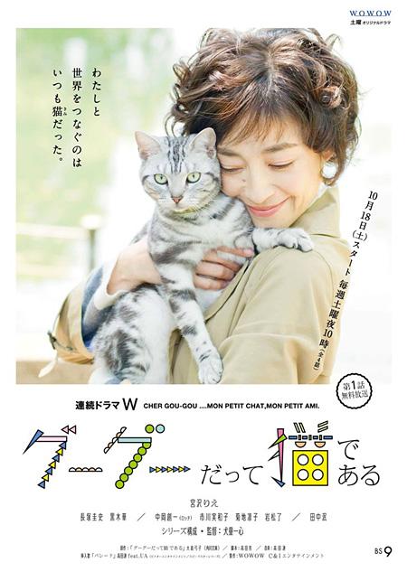 連続ドラマW『グーグーだって猫である』ビジュアル
