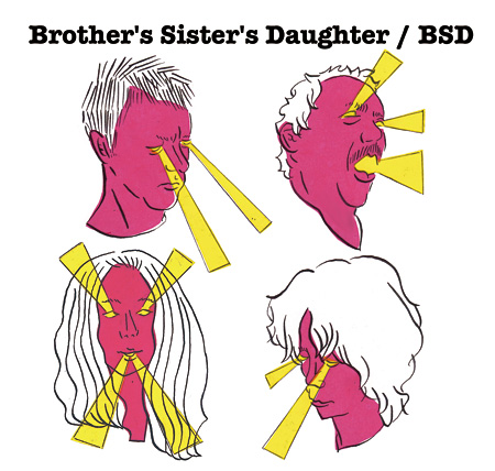 brother's sister's daughter『BSD』ジャケット