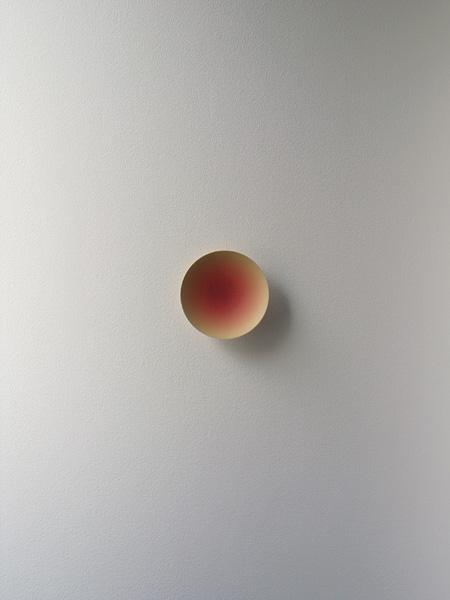 榎本裕一『塗膜の花』2007 水性塗料、ウレタン塗料
