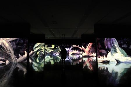 『追われるカラス、追うカラスも追われるカラス、そして分割された視点 – Light in Dark』チームラボ、2014、デジタルインスタレーション、4min 20sec(ループ)、音楽:高橋英明