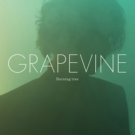 GRAPEVINE『Burning tree』初回限定盤ジャケット