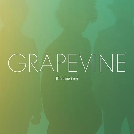 GRAPEVINE『Burning tree』通常盤ジャケット