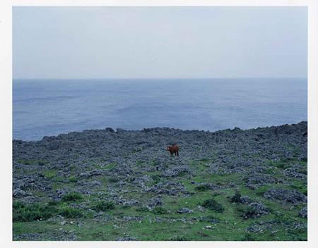 池田裕一『風のはじまり』ゼラチンシルバーセッション フォト アワード 優秀作品