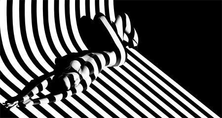Zebra 17, Photograph, print 2012