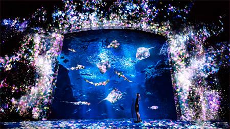 チームラボ『花と魚- 相模湾大水槽』2015 インタラクティブデジタルインスタレーション 音楽:高橋英明