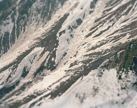 『plastic nature』 type-c print 1300x1500mm  ©Naoki Honjo
