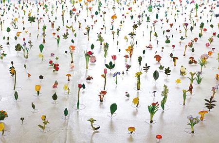 渡辺英司『名称の庭』 2014 年 図鑑・針金・テープ 箱根彫刻の森美術館での展示風景