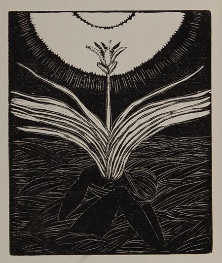 田中恭吉『冬虫夏草』1914年 愛知県美術館