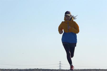 『ジョギング渡り鳥』