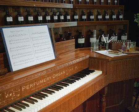 Perfumery Organ 写真:黑田菜月
