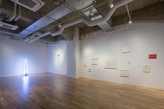 『コレクターとアーティスト:川内理香子展』2015, 寺田倉庫T-Art Gallery 展覧会風景(撮影:松尾宇人)