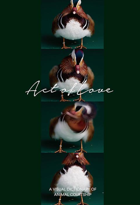 『ACT OF LOVE~愛は、行動するもの。~』表紙