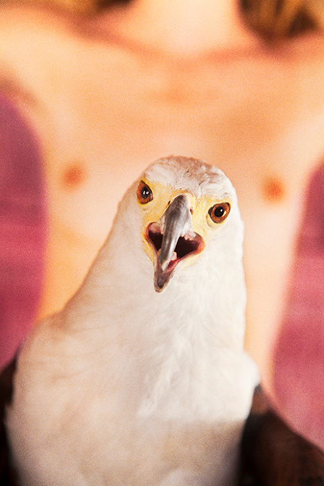 『Bald Eagle(Pink)』Cプリント 2012 ©Ryan McGinley Courtesy the artist and Tomio Koyama Gallery