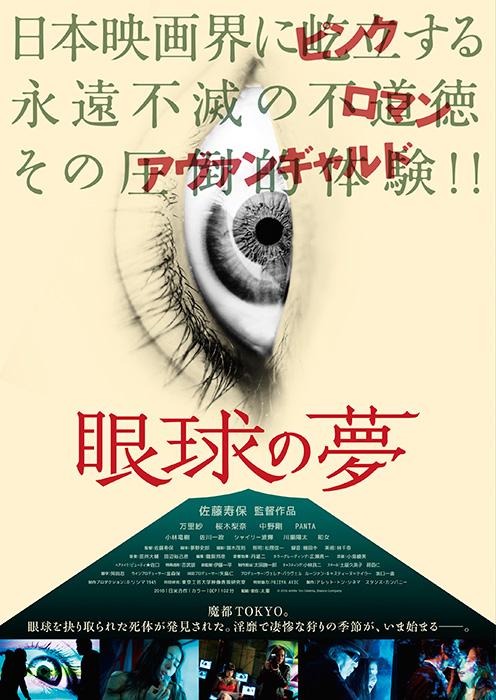 『眼球の夢』メインビジュアル ©2016 Arrete Ton Cinema, Stance Company