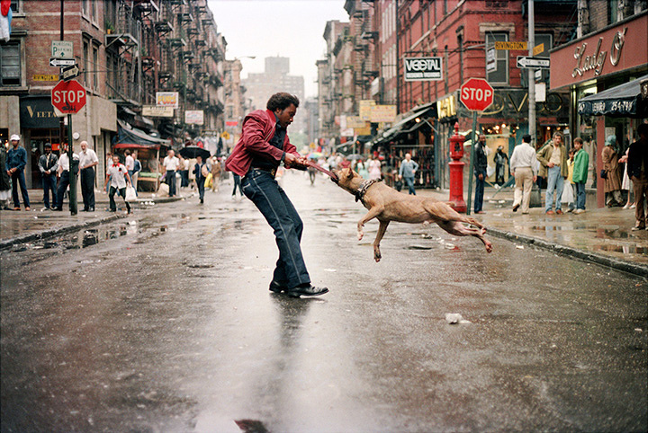 『フォトグラファーズ・イン・ニューヨーク』 ©2013 Alldayeveryday