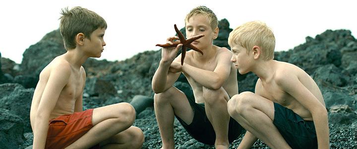 『エヴォリューション』 ©LES FILMS DU WORSO・NOODLES PRODUCTION・VOLCANO FILMS・EVO FILMS A.I.E.・ SCOPE PICTURES・LEFT FIELD VENTURES / DEPOT LEGAL 2015