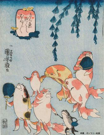 歌川国芳『金魚づくし ぼんぼん』ギャラリー紅屋蔵
