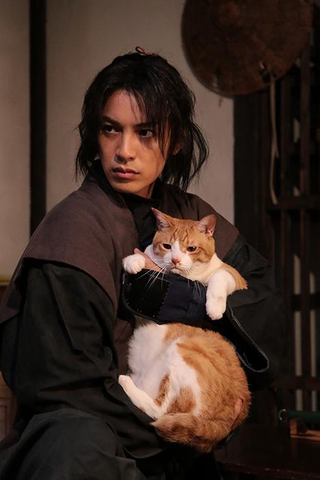 『猫忍』 ©2017「猫忍」製作委員会