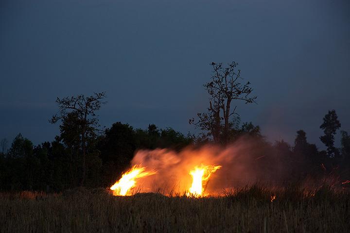 アピチャッポン・ウィーラセタクン『炎』2009年 インクジェット・プリント 東京都写真美術館蔵