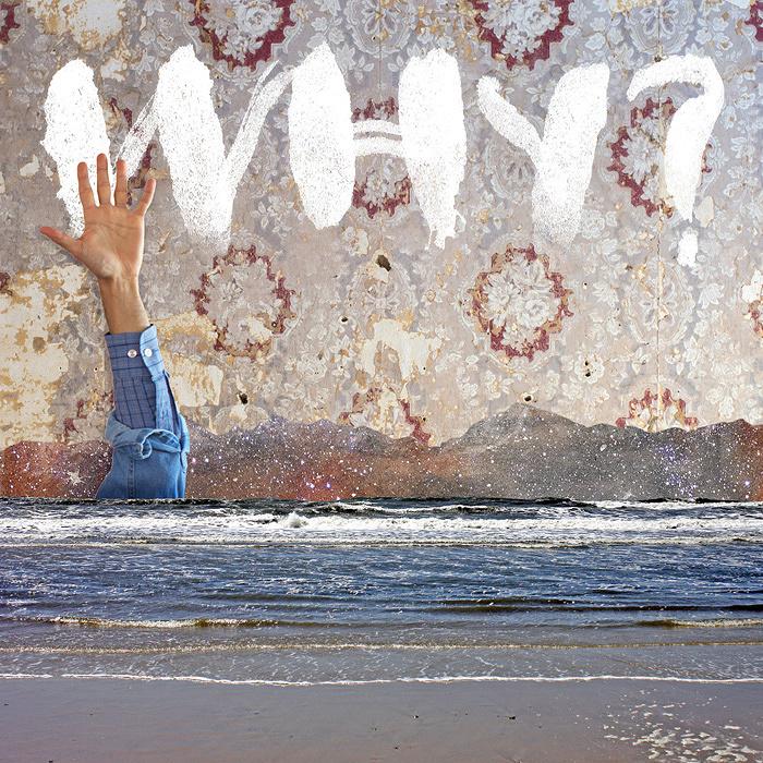 WHY?『Moh Lhean』ジャケット