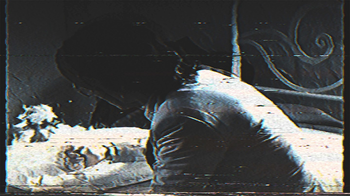 ドレスコーズ『H VIDEO』より