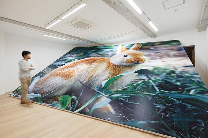 山田周平作品 CAPSULE(東京)での展示風景 2012年 ©Shuhei YAMADA