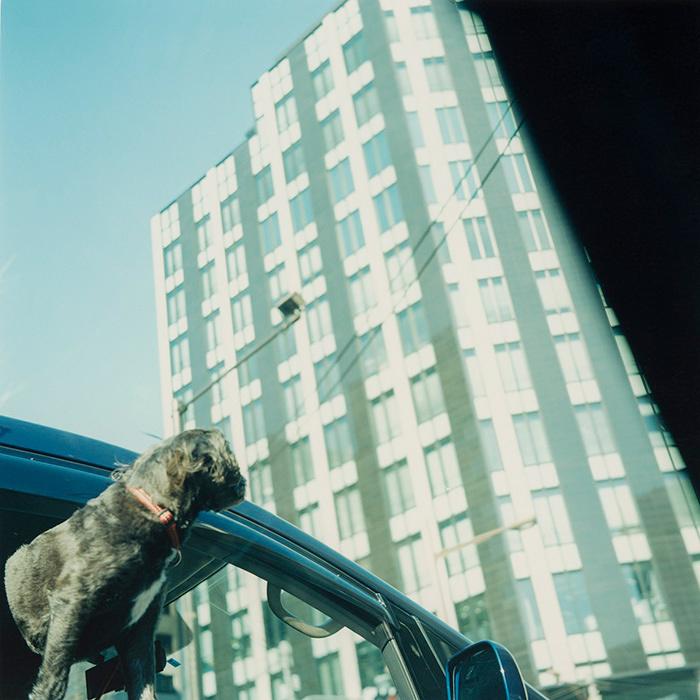 原美樹子『Untitled, 2008』 ©原美樹子