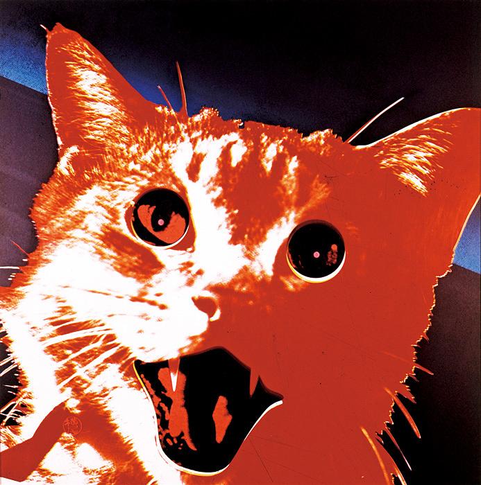 横尾忠則『風景No.13 赤猫』1969年 シルクスクリーン 90×90cm 個人蔵