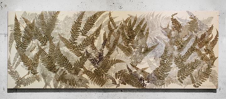ロギール・アウテンボーガルト作品 2015年 60cm×170cm 楮・三椏・シダ