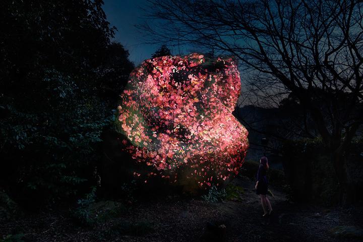 チームラボ『増殖する生命の巨石』2017, Digitized Nature
