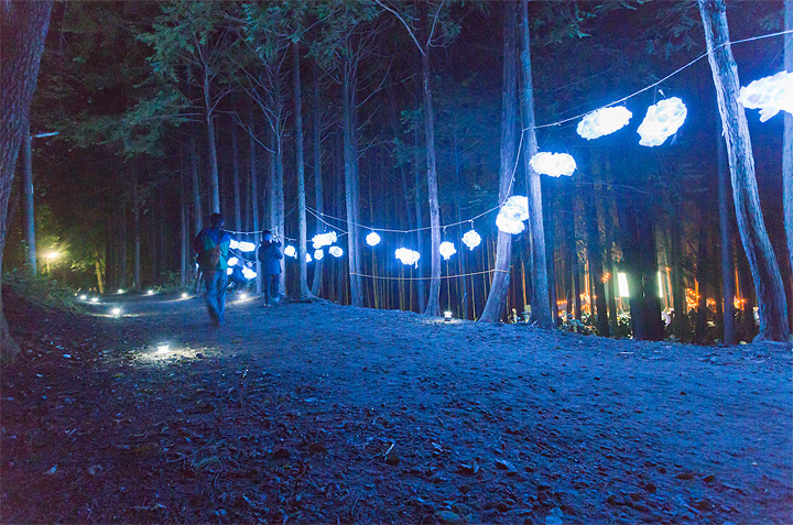 『夜空と交差する森の映画祭2017』イメージビジュアル