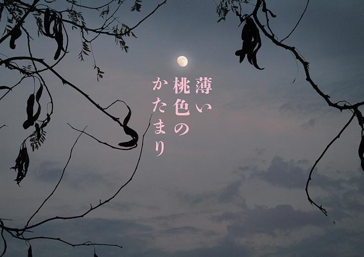 さいたまゴールド・シアター第7回公演『薄い桃色のかたまり』メインビジュアル ©SACO