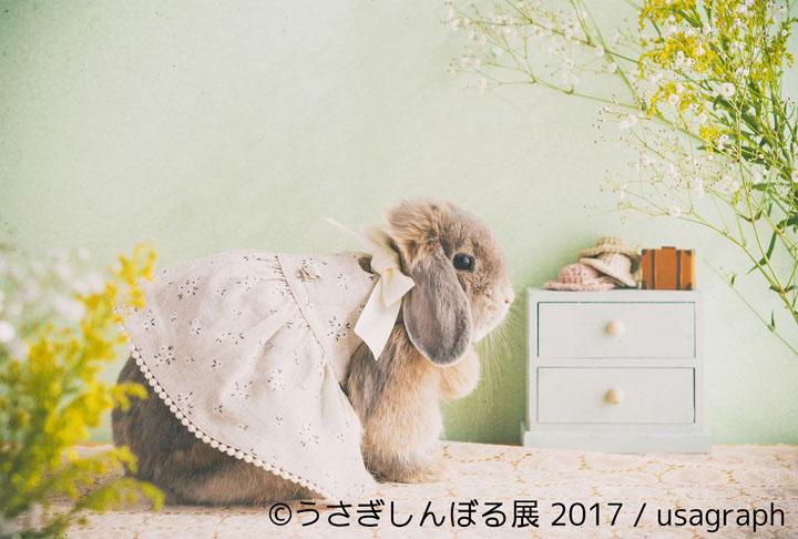 『うさぎしんぼる展 2017』展示作品 ©うさぎしんぼる展 2017 / usagraph