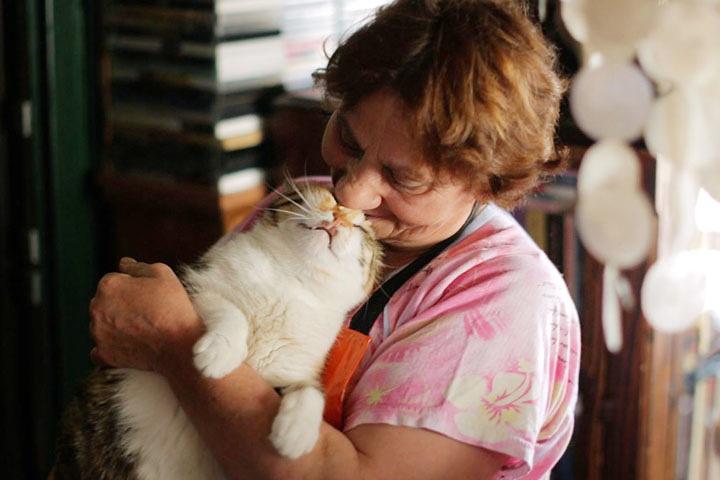 『猫が教えてくれたこと』 ©2016 Nine Cats LLC