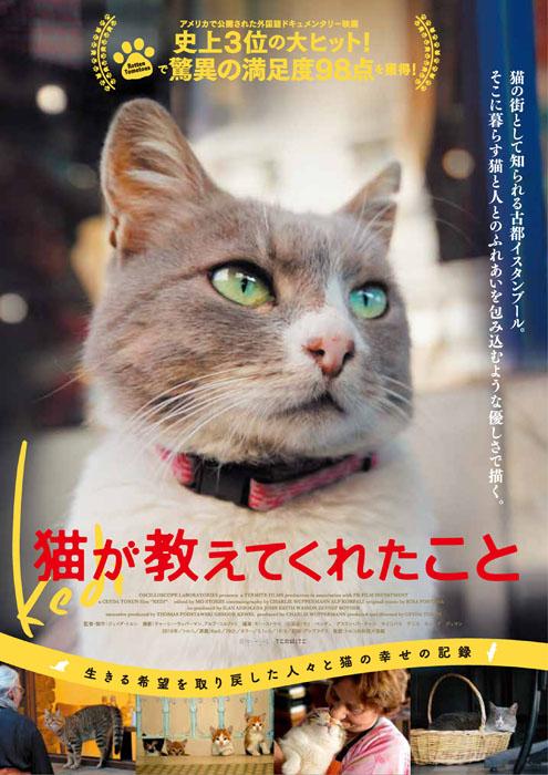 『猫が教えてくれたこと』ポスタービジュアル ©2016 Nine Cats LLC