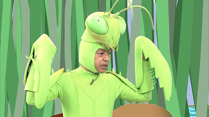 『香川照之の昆虫すごいぜ!~トノサマバッタ~』より