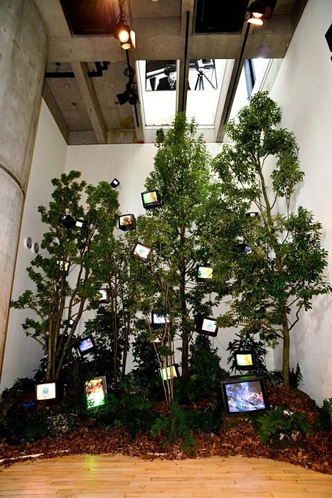 『ケージの森/森の啓示』1993年 植物、モニター23台、映像3チャンネル、再生機3台、ステレオ1組 554×465×800㎝ 撮影:岡倉禎志