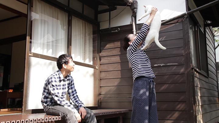『愛しのノラ~幸せのめぐり逢い~』 ©日本スカイウェイ