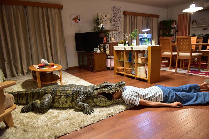 『家に帰ると妻が必ず死んだふりをしています。』 ©2017「家に帰ると妻が必ず死んだふりをしています。」製作委員会
