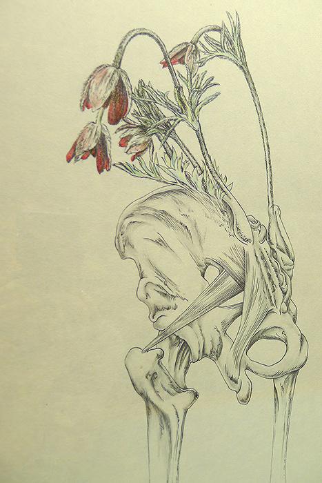 束芋『flow-wer 026』2015年 和紙に墨、蜜蝋(クレヨン)、色鉛筆、鉛筆 ©Tabaimo / Courtesy of Gallery Koyanagi