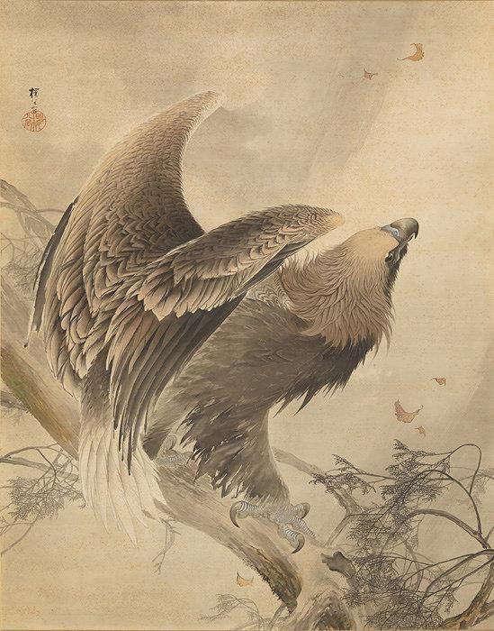 木島櫻谷『猛鷲図』明治36年(1903)株式会社千總蔵