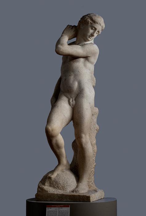 理想の身体美に迫る『ミケランジェロと理想の身体』展、日本初公開作も ...