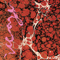 ICEAGE『Beyondless』日本盤