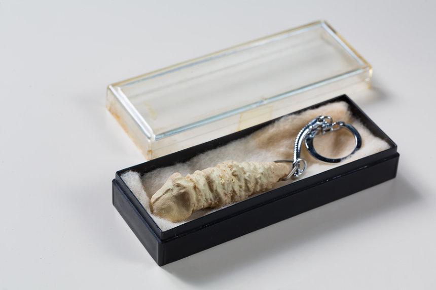 工藤哲巳『広島の化石/脱皮の記念品』