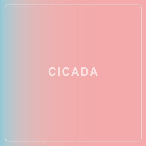 CICADA『ふれてほしい』ジャケット
