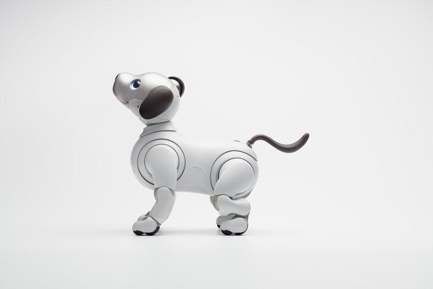 2018年度『グッドデザイン賞』金賞 ソニー株式会社によるエンタテインメントロボット「aibo」