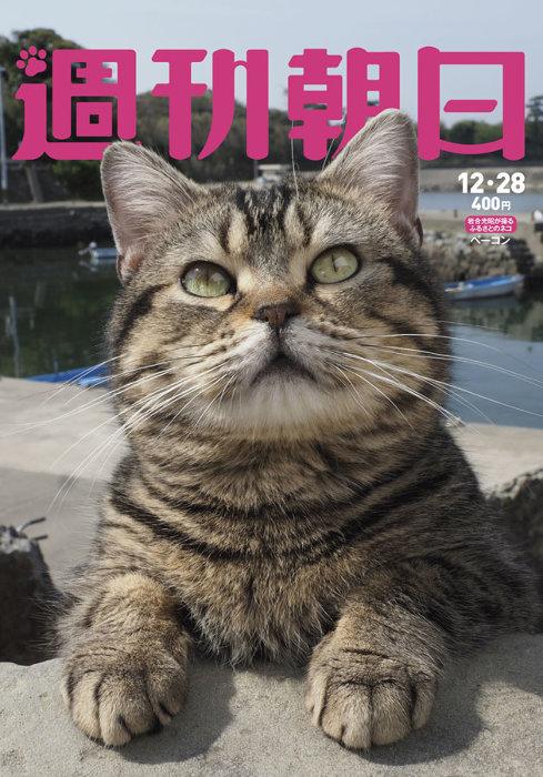 『週刊朝日 2018年12月28日号』表紙