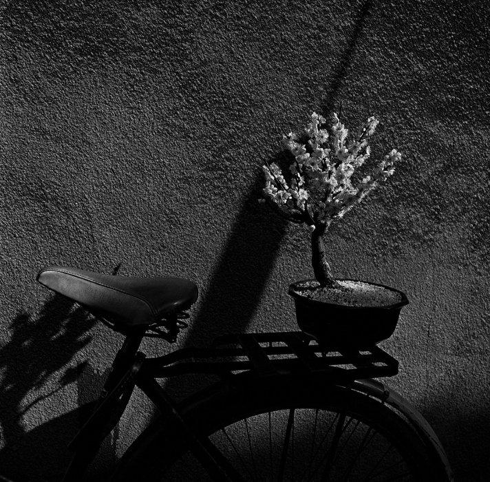 Issei Suda From the series『Waga Tokyo 100』 Minowa 1977 ©Yoshiko Suda