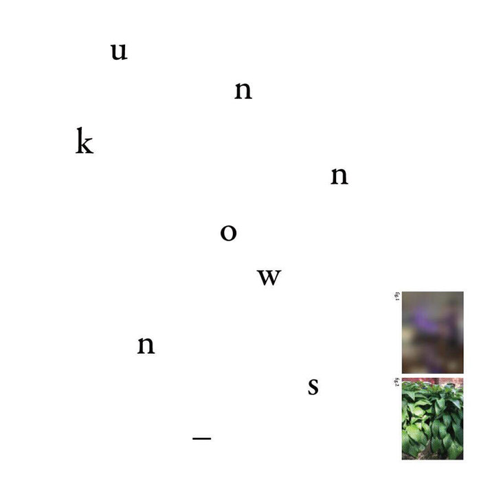 『unknowns _ 田岡美紗子とジェシー・ホーガンによる展示』イメージビジュアル